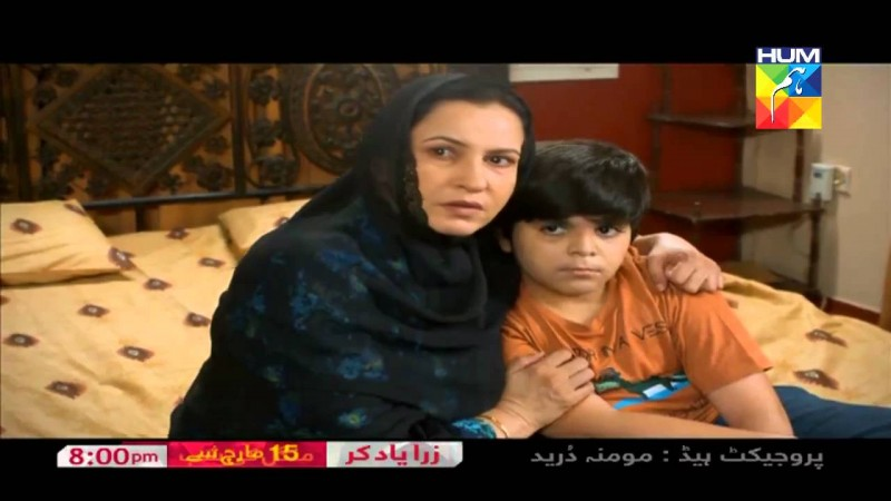 Zara Yaad Kar Hum Tv Drama, Cast, Timings, And Schedule