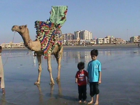 Sea View Beach In Clifton Karachi, Address, Timings, Map