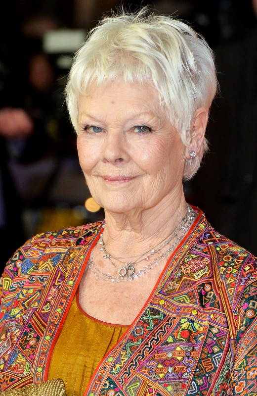 Judi Dench Movies List, Height, Age, Family, Net Worth