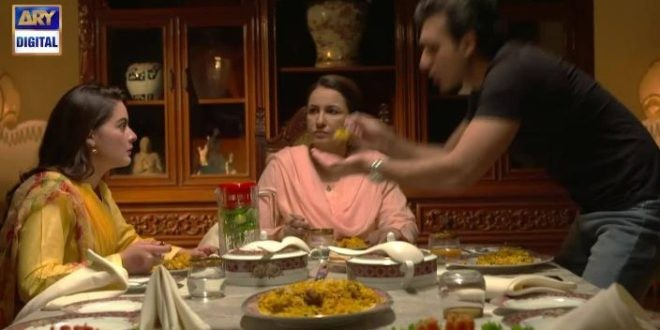 Hasad ARY Digital Drama, Cast, Timings, And Schedule