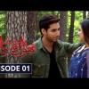 Bhool Jaa Ay Dil - Full Drama Information