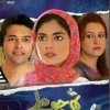 Tum Jo Miley - Full Drama Information