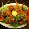 Habibi Restaurant Dish 2