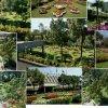Avari Lahore 001