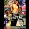 The System 2014 28