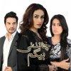Chandni Begum 006