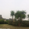 Jinnah Park 4