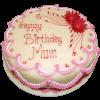Nagina Bakery cake 1