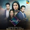 Qurbatain - Full Drama Information