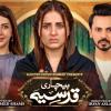 Bechari Qudsia - Full Drama Information