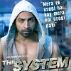 The System 2014 8