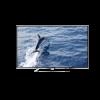 Changhong Ruba UD55C5500i 55 Inches LED TV