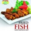Student Biryani Fried Fish