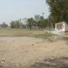 Gama Stadium 1
