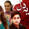 Manay Na Ye Dil- Full Drama Information