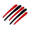 Alam's Store Logo