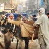 Qissa Khawani Bazaar 12