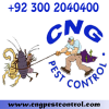 Pest Control Services (CNG)