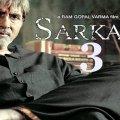 Sarkar 3 18
