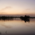Lake Mirpurkhas 1