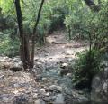 Trail 5 5
