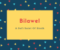 Bilawel Name Meaning A Sufi Saint Of Sindh