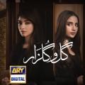 Gul-o-Gulzar - Full Drama Information