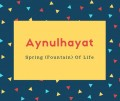 Aynulhayat Name Meaning Spring (Fountain) Of Life