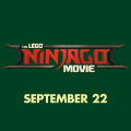 The LEGO Ninjago 14