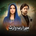 Mera Rab Waris - Full Drama Information