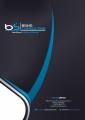 BSNS Consultant