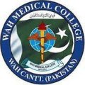 Institute of Nursing - Wah Medical College logo
