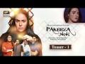 Pakeeza Phopho - Full Drama Information