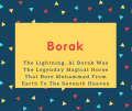 Borak Name Meaning The Lightning, Al Borak Was The Legenday Magical Horse That Bore Muhammad From Earth To The Seventh Heaven