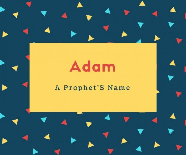 Adam Name Meaning A Prophet'S Name
