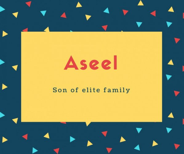 Aseel Name Meaning Son of elite family