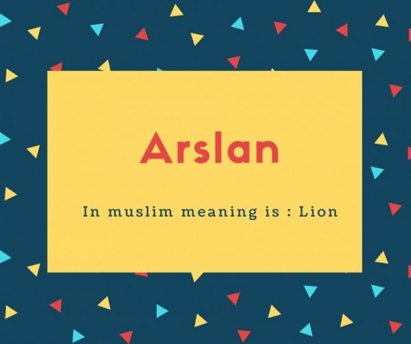Arslan Name Meaning In muslim meaning is _ Lion