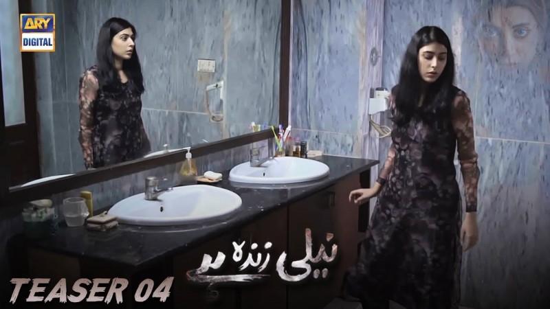 Neeli Zinda Hai - Actors, Timings, Review