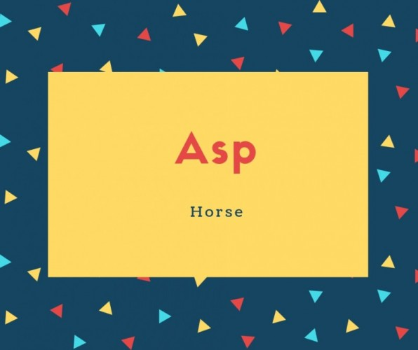 Asp Name Meaning Horse