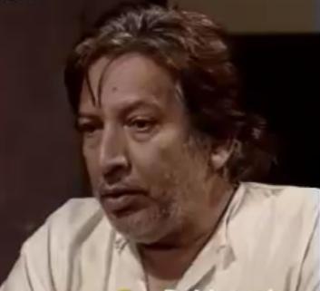 Talat Hussain 3