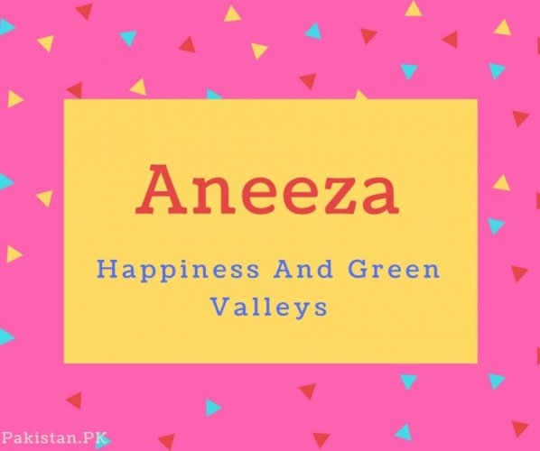 Aneeza Name Meaning Happiness And Green Valleys