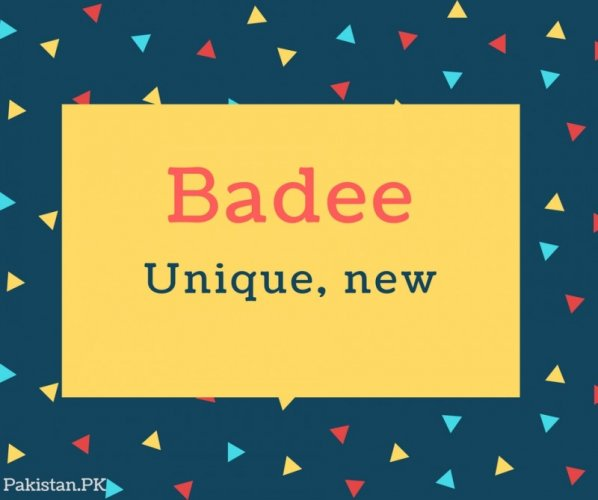 Badee name Meaning In Unique, new