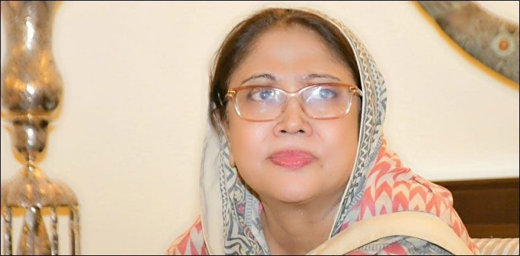 Faryal Talpur Find Everything About Her