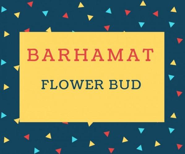 Barhamat Name meaning Flower Bud.