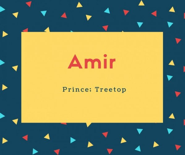 Amir Name Meaning Prince; Treetop