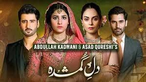 Dil-e-Gumshuda actor name, timings,reviews