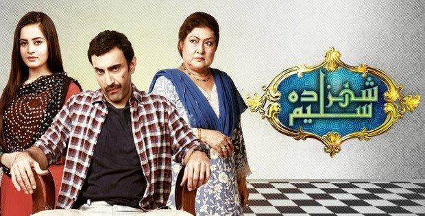 Shehzada Saleem001