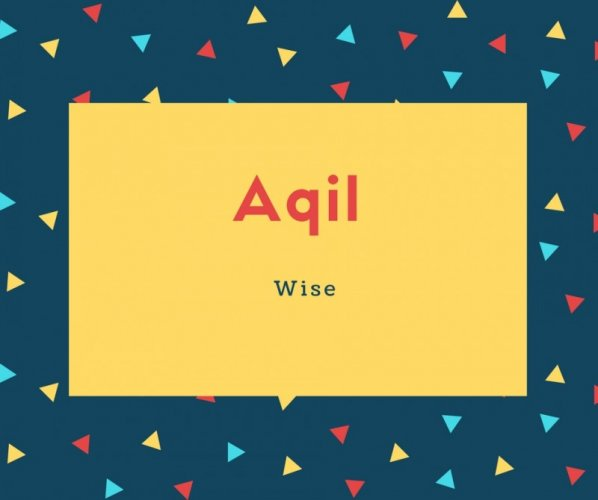 Aqil Name Meaning Wise