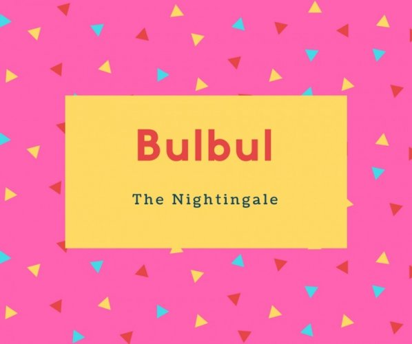Bulbul Name Meaning The Nightingale