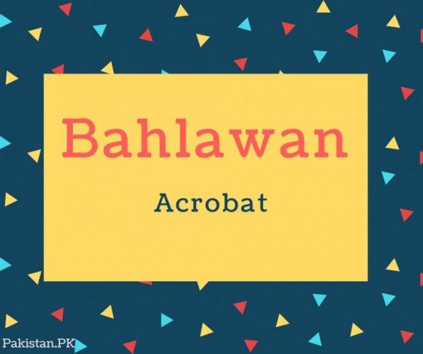 Bahlawan Name Meaning Acrobat